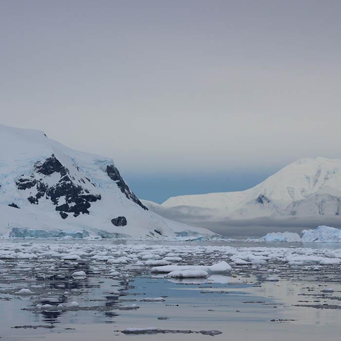 Antarctica_Postcard_Wanderlust