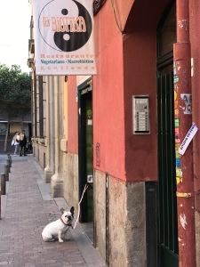 Bioteka_Madrid