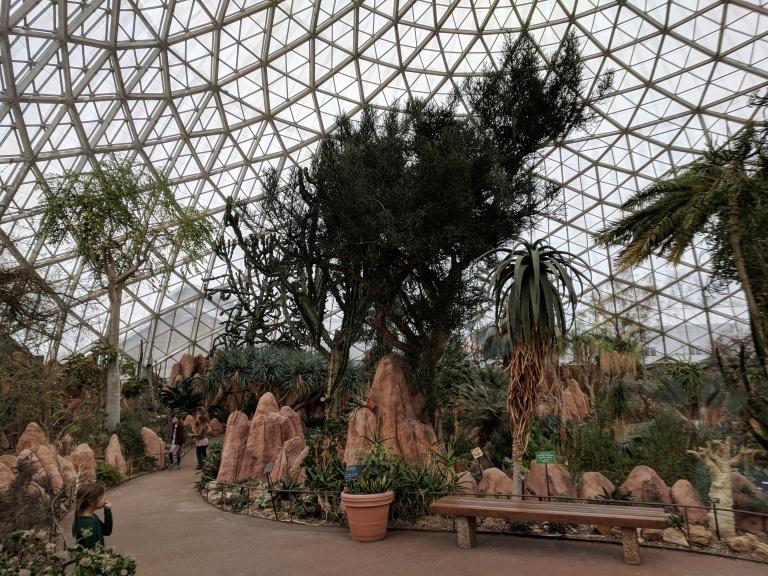 Desert Dome interior shot