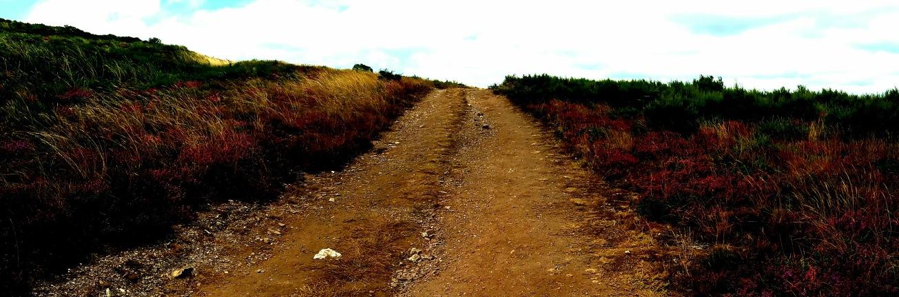 markwestwriter.com-Camino-de-Santiago-memoir-Spain- Mark Daniel West-Road