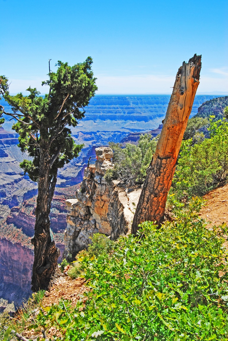 AZ_327-1_GRAND_CANYON_NP_6-13